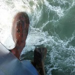 Frachtschiff Reise durch Asien – der 3. Teil der Weltreise