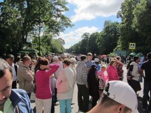Besucher in Zarskoje Selo