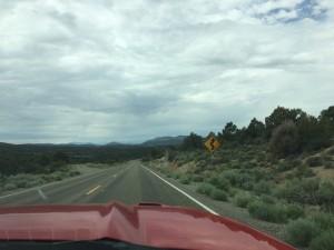 Von Las Vegas zum Yosemite Park