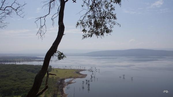Afrika kann man riechen! Unterwegs im Rift Valley