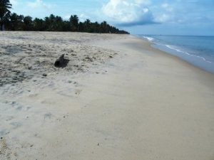 Unsere letzten Tage am Marari Strand