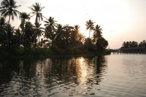 Kanu tour auf den Backwaters in Kerala