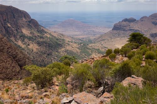Der Marakele Nationalpark in Südafrika ist bekannt für seine spektakuläre Berglandschaft.