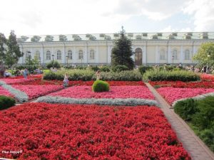 farblich abgestimmte Blumenpracht am Alexandergarten