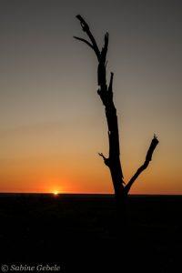 Sonnenaufgang ueber der Sinamatella Flussebene