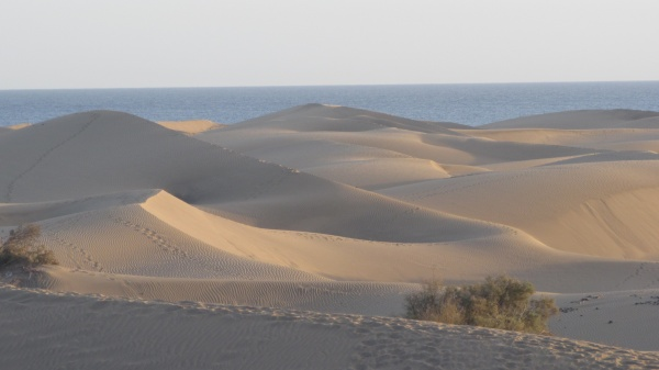 Gran Canaria ist wieder eine Reise wert