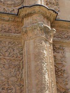 Das Maskottchen von Salamanca- der Frosch