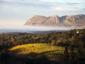 Tafelberg Südafrika Singlereisen