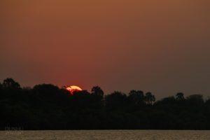 Sonnenuntergang auf dem Sambesi-Fluss