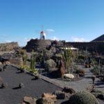 Single Urlaub auf die Kanarischen-Inseln Lanzarote & Fuerteventura!