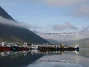 Naturschauspiel Hafen bei Ihrem Single Urlaub in Island