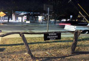 Schild Horse Parking Only